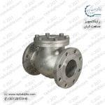 check-valve-2